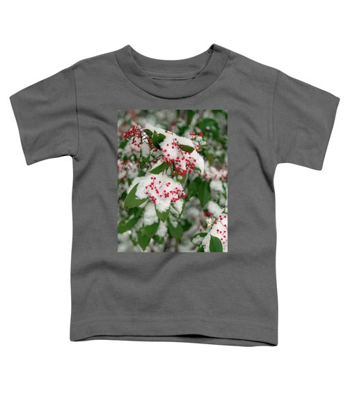 Snow Covered Winter Berries Toddler T-Shirt