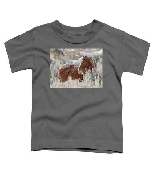 Snow Dusted Mustang Stallion Toddler T-Shirt