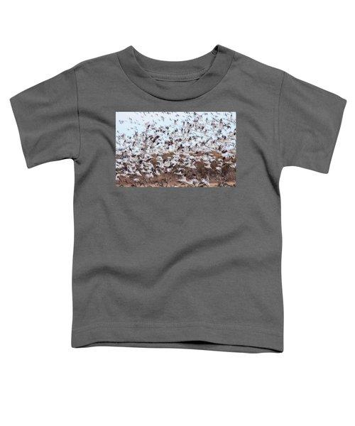 Snow Geese Chaos Toddler T-Shirt