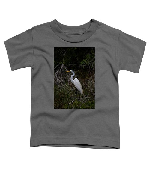 Snowy Egret On A Hot Summer Day Toddler T-Shirt