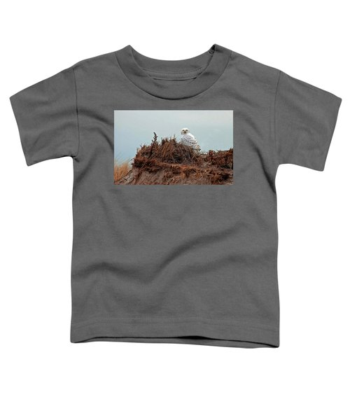 Snowy Owl In The Dunes Toddler T-Shirt