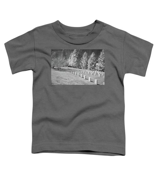 Somber Scene Toddler T-Shirt