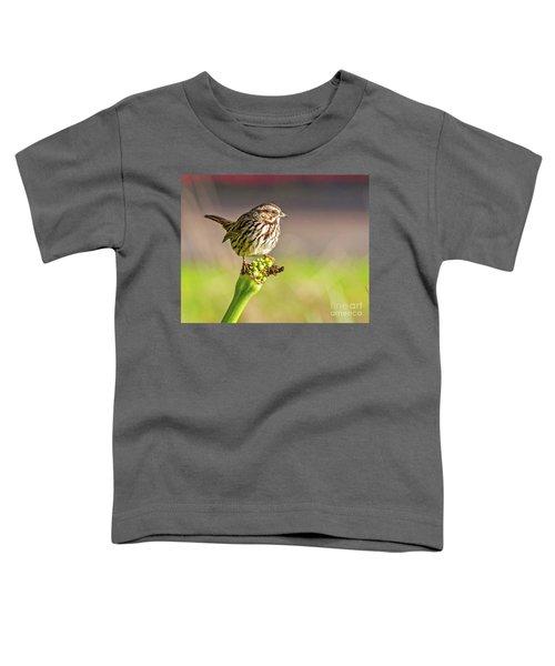 Songster Perching Toddler T-Shirt