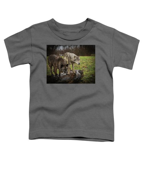 Sort Of Twins Toddler T-Shirt