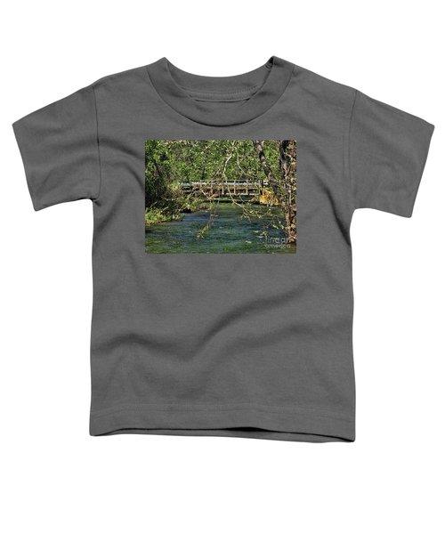 Spring In The North Carolina Mountains Toddler T-Shirt