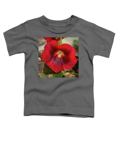 Square Red Hollyhock Toddler T-Shirt