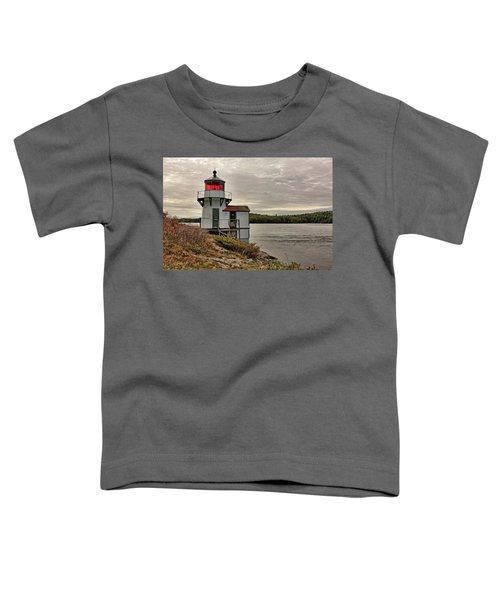 Squirrel Point Light Toddler T-Shirt