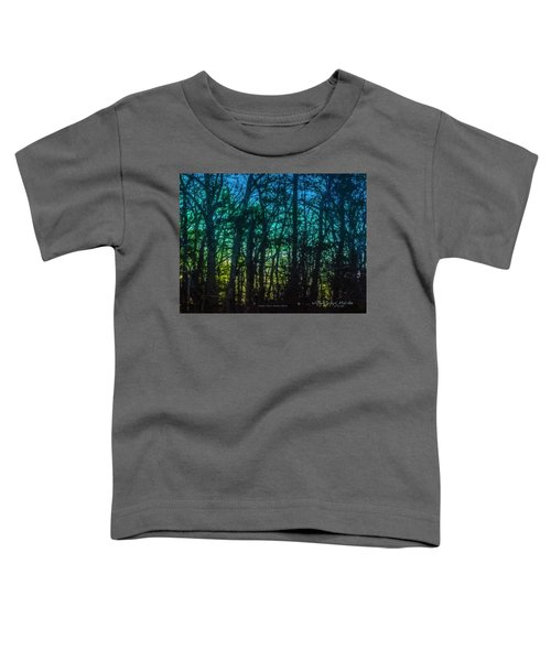Stained Glass Dawn Toddler T-Shirt