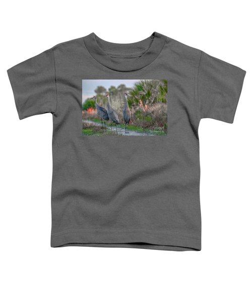 Standing Sandhills Toddler T-Shirt