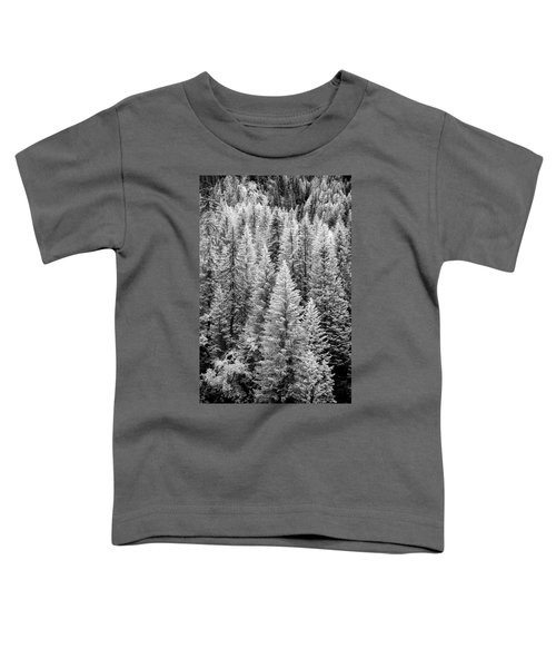 Standing Tall In The French Alps Toddler T-Shirt