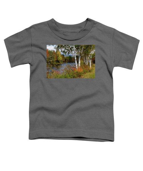 Stark, Nh Fall White Birch  Toddler T-Shirt