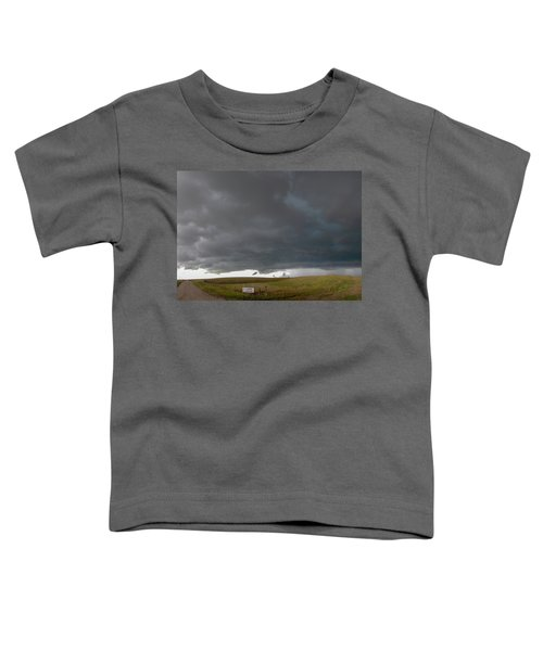 Storm Chasin In Nader Alley 016 Toddler T-Shirt