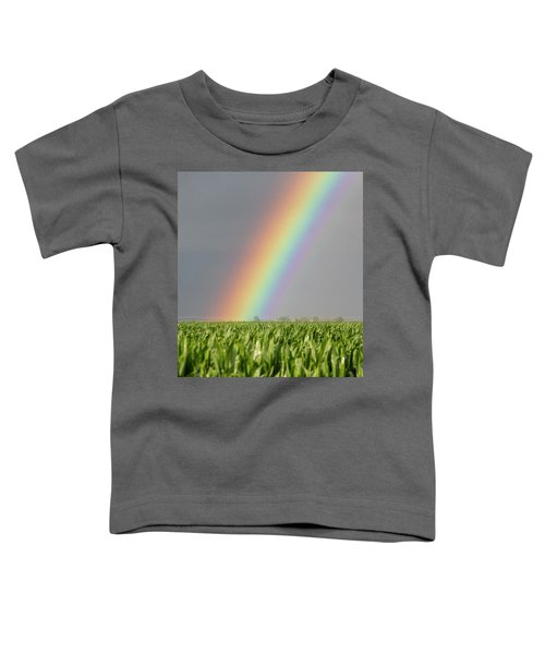 Storm Chasing After That Afternoon's Naders 023 Toddler T-Shirt