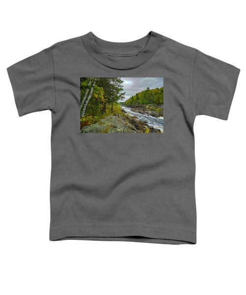 Storm Clouds At Jay Cooke Toddler T-Shirt