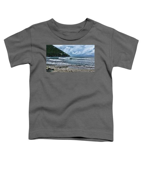 Stormy Shores Toddler T-Shirt