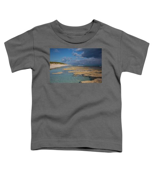 Stromatolites On Stocking Island Toddler T-Shirt