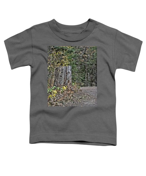 Stumped Toddler T-Shirt