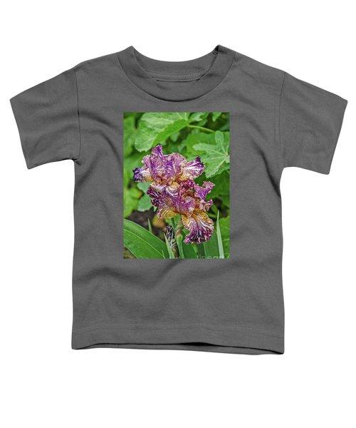 Stunning Variegated Iris Blossoms Toddler T-Shirt