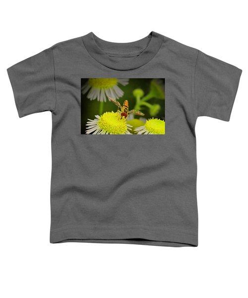 Sugar Bee Wings Toddler T-Shirt
