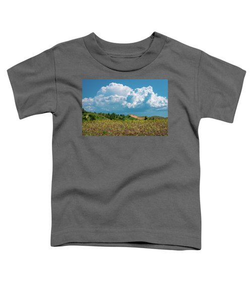 Summer Storm Over The Dunes Toddler T-Shirt