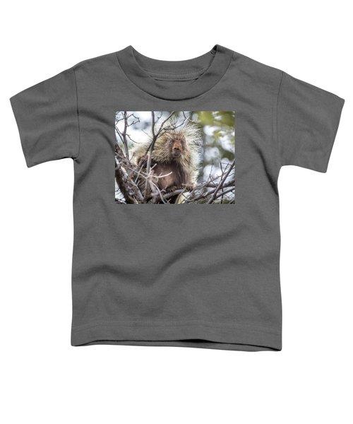 Sunday Mornings  Toddler T-Shirt
