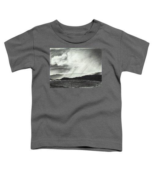 Sunny Rainfall Toddler T-Shirt