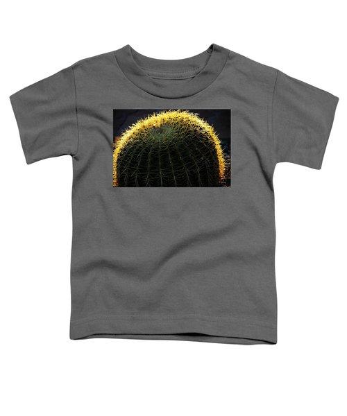 Sunset Cactus Toddler T-Shirt