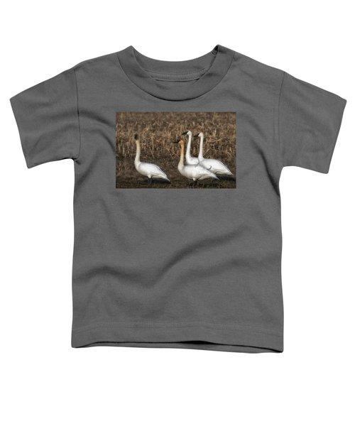 Swans Toddler T-Shirt