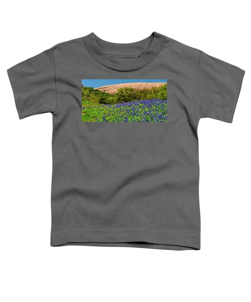 Texas Bluebonnets And Enchanted Rock 2016 Toddler T-Shirt