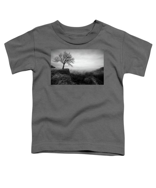 Thacher Scenic Overlook Toddler T-Shirt