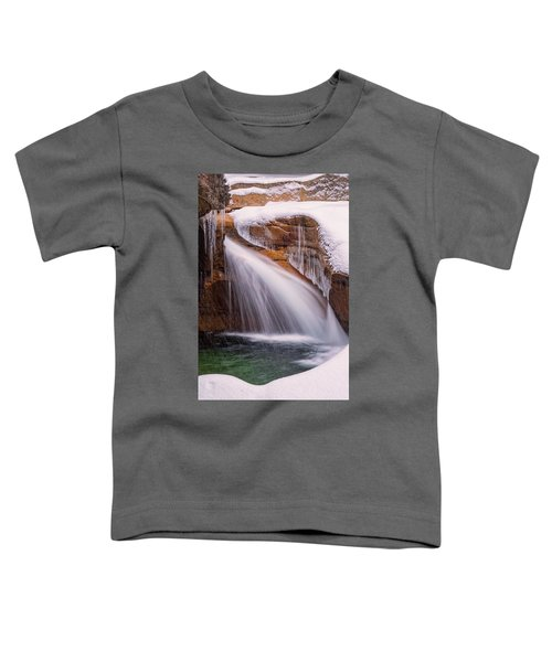The Basin, Close Up In A Winter Storm Toddler T-Shirt