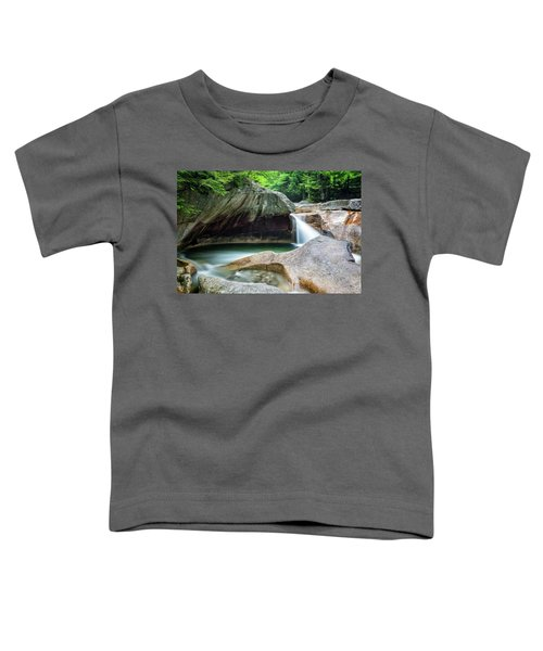 The Basin, Springtime Nh Toddler T-Shirt