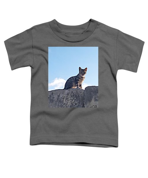 The Cat Toddler T-Shirt