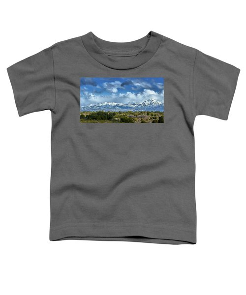 The City Of Bariloche And Landscape Of Snowy Mountains In The Argentine Patagonia Toddler T-Shirt