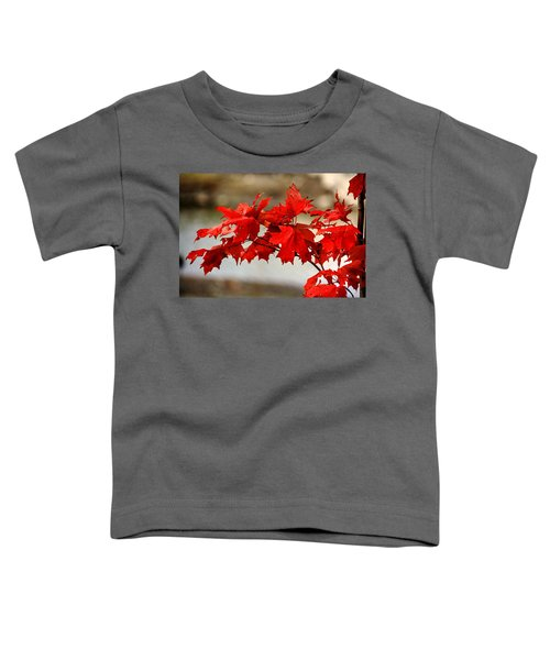 The Future. Toddler T-Shirt