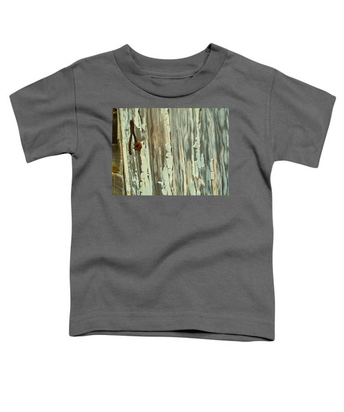 The Peeling Wall Toddler T-Shirt