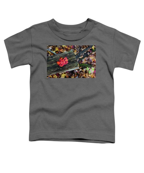 The Reason They Call It Fall Toddler T-Shirt