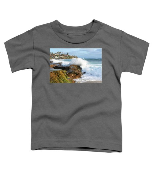The Sea Was Angry That Day My Friends Toddler T-Shirt