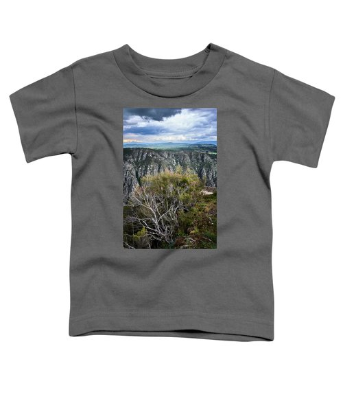 The Sights Of The Sil Toddler T-Shirt