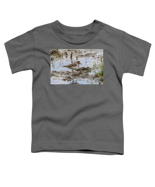 Three-banded Plover Toddler T-Shirt