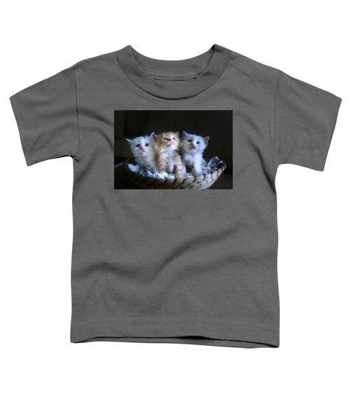 Three Little Kitties Toddler T-Shirt