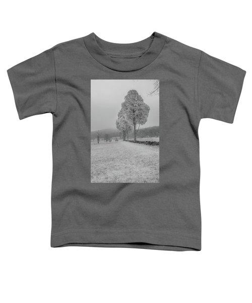 Three Sentinals Toddler T-Shirt