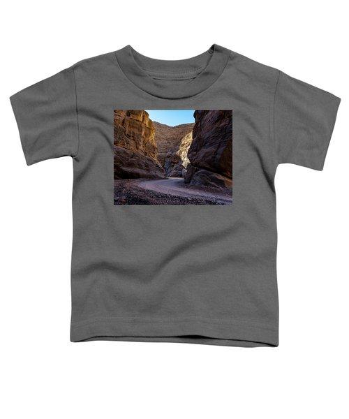 Titus Canyon I Toddler T-Shirt