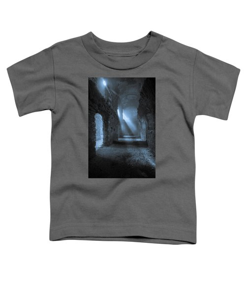 Traces Of The Past Toddler T-Shirt