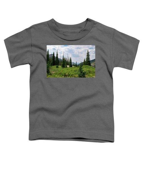 Trail To Gilpin Lake Toddler T-Shirt