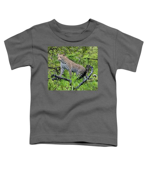 Tree Climbing Leopard Toddler T-Shirt
