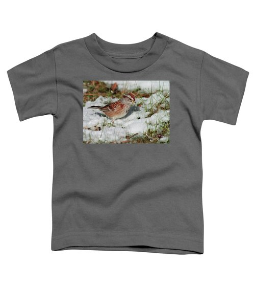 Tree Sparrow In Snow Toddler T-Shirt