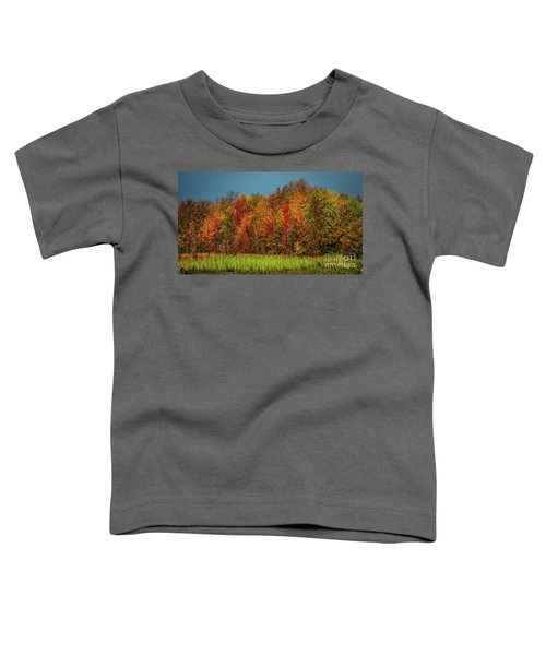 Tug Hill Colors Toddler T-Shirt