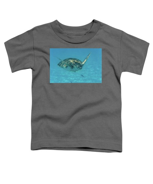 Turtle Approaching Toddler T-Shirt