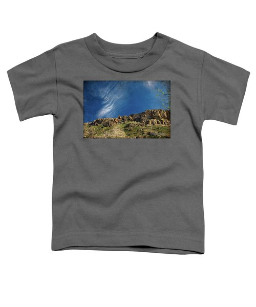 Tuscon Clouds Toddler T-Shirt